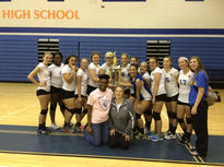 Volleyball team 2015.jpg